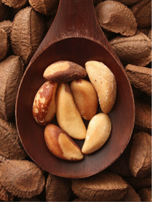Brazil Nuts: Newly tested for FODMAP content