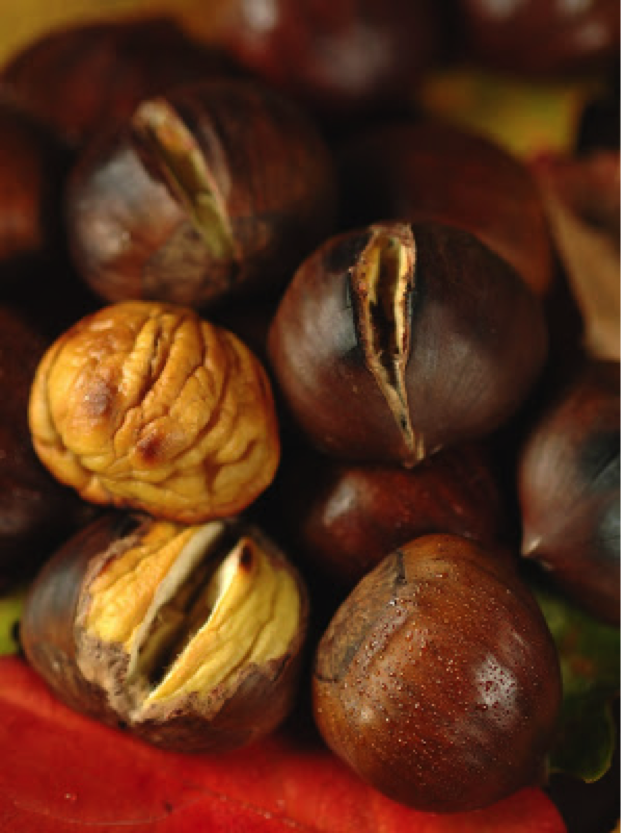 Chestnuts - Newly Tested Food