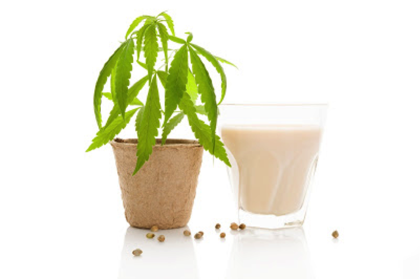 Milk alternatives on a low FODMAP diet