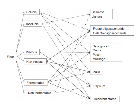Figure 2. Overlapping properties of fibre by solubility, viscosity and fermentability. Source: OGrady 2019
